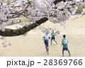 イメージ素材 桜の下でサッカーをする子供たち 28369766