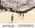 イメージ素材 桜の下でサッカーをする子供たち 28369822