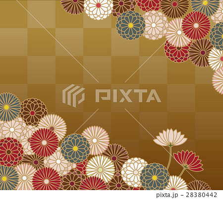 菊の花の和柄模様 28380442