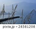日月潭 湖景 28381208