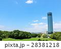 青空 快晴 公園の写真 28381218