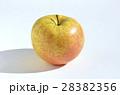 リンゴ(サン金星) 28382356