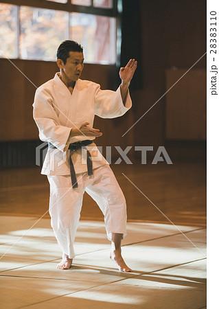 martial artist 28383110