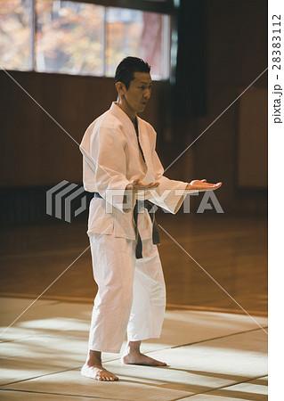 martial artist 28383112