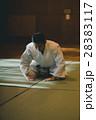 martial artist 28383117