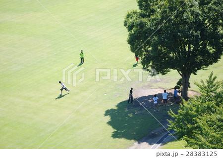 山梨の緑あふれる公園03 28383125