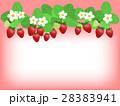 苺 ベクター 果物のイラスト 28383941