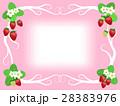 苺 ベクター 果物のイラスト 28383976