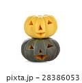 かぼちゃ カボチャ 南瓜の写真 28386053