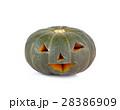かぼちゃ カボチャ 南瓜の写真 28386909