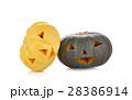 かぼちゃ カボチャ 南瓜の写真 28386914