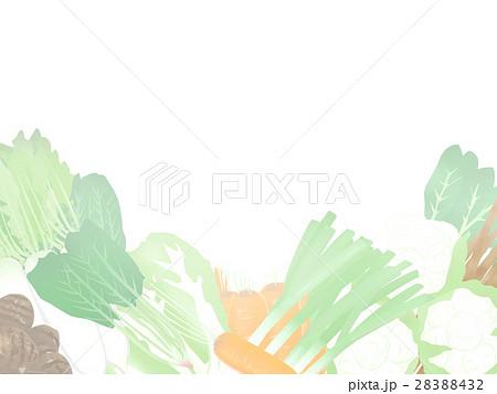 冬 野菜イラスト フレーム 明るい 28388432
