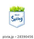 HELLO こんにちは ハローのイラスト 28390456