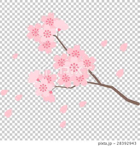 桜 28392943