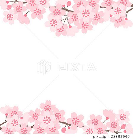 桜 28392946