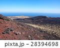 伊豆大島 溶岩石 裏砂漠の写真 28394698