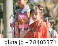 七五三 神社 参拝の写真 28403371