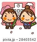 小学生 男子 女子のイラスト 28403542