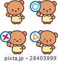 クマさん〇×△ アニマル 可愛い動物 28403999