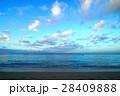 ハワイ 浜辺 28409888