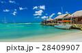 Palm beach at Aruba island 28409907