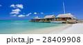 Cafe on tropical beach at Aruba 28409908