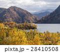 秋の札幌ダム 28410508