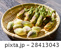 タラの芽 山菜 新芽の写真 28413043
