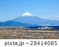 三保の松原と富士山 28414065
