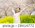 桜 女性 菜の花の写真 28414772