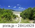 阿嘉島 沖縄 慶良間諸島国立公園の写真 28414929