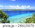 阿嘉島 北浜 沖縄の写真 28415070