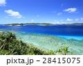 阿嘉島 北浜 沖縄の写真 28415075