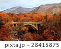 鳴子峡 紅葉 渓谷の写真 28415875