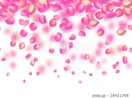 vector falling rose pink petals floral backgroundのイラスト素材