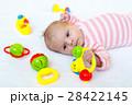 ベビー 赤ちゃん 赤ん坊の写真 28422145