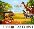 Safari Colored Poster 28431694