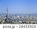 東京都市風景東京スカイツリー 都心の街並 快晴 青空 2017年 28433920