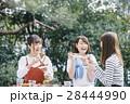 女子 ピクニック 28444990