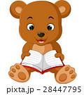 くま クマ 熊のイラスト 28447795