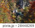 11月 紅葉の鳴子峡 東北の秋 28448269