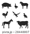 Silhouettes of livestock. 28448807