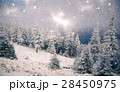 Christmas background with snowy fir trees  28450975