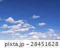 春の青空 28451628