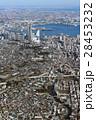 空撮 都市 横浜の写真 28453232