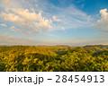 クラウド 雲 森林の写真 28454913