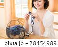 編み物をする女性 28454989