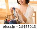 編み物をする女性 28455013