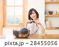 編み物をする女性 28455056
