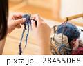 編み物をする女性 28455068